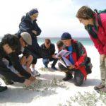 Sortie découverte des dunes