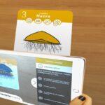 jeu cartes plancton 3D