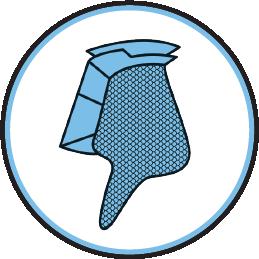 plancton dinophysis