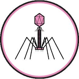 plancton phage